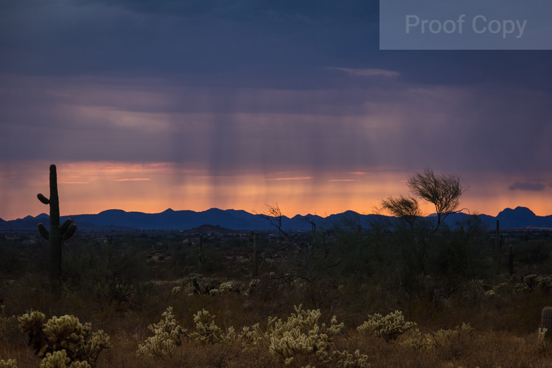 Rain Shafts At Sunset