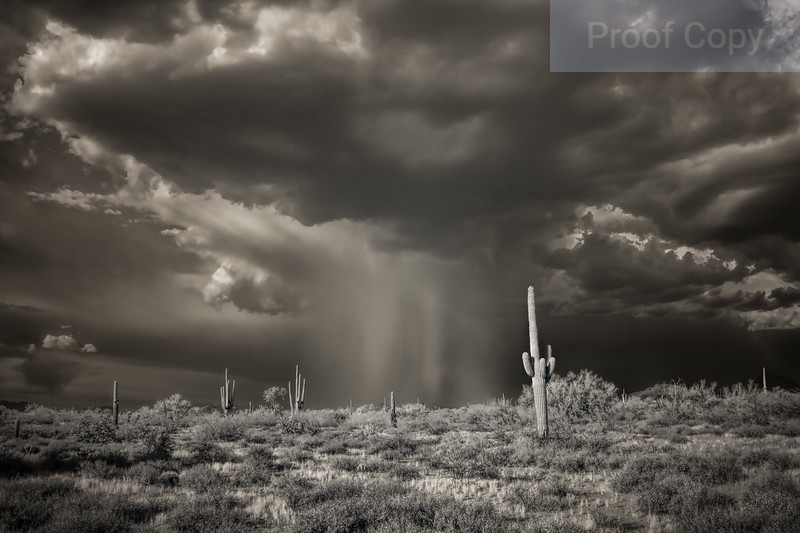 Rain Shafts Over North Phoenix