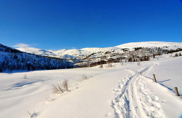 Løkjane, Bordalen 22.02.2011