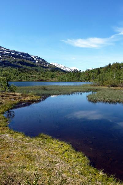 Tur Rong - Helgaset 15.06.2010..Furuvatnet.