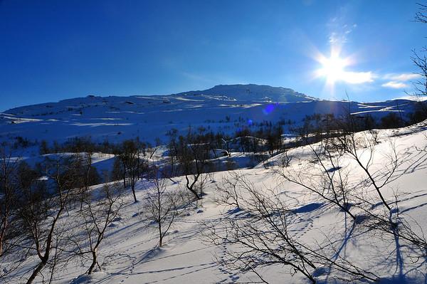 Karaldenuten, Bordalen 22.02.2011