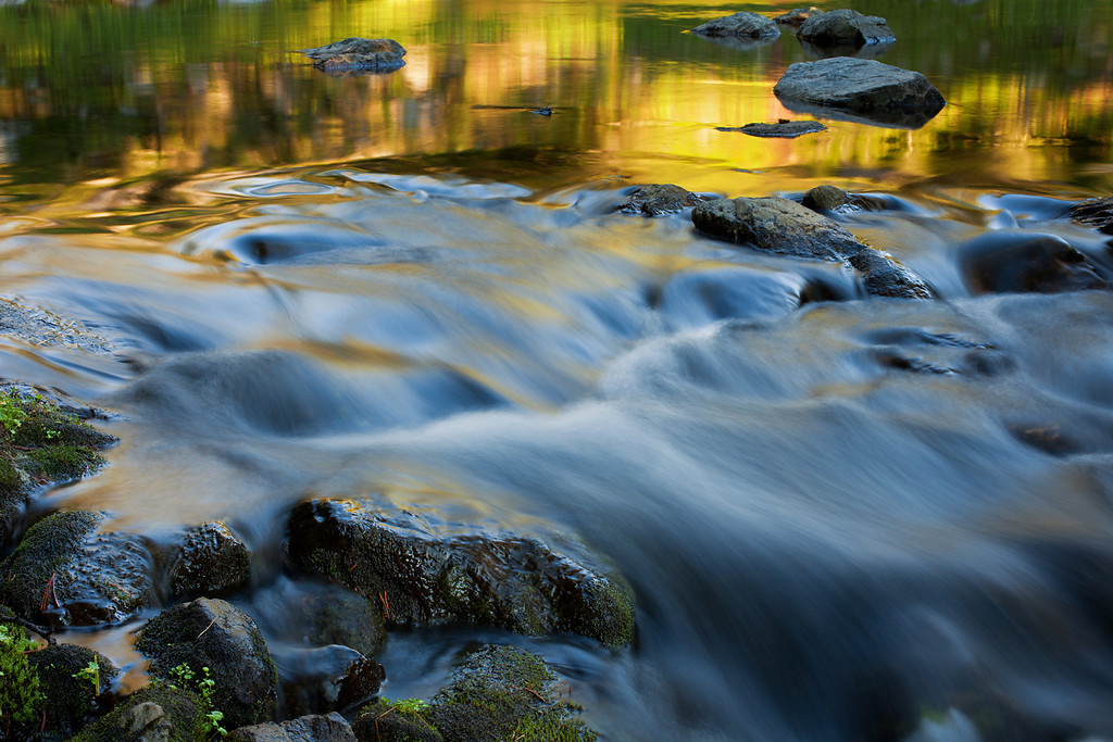 Summer Reflections in Mountain Stream 2, South Hilgard Basin,Lee Metcalf Wilderness, MT