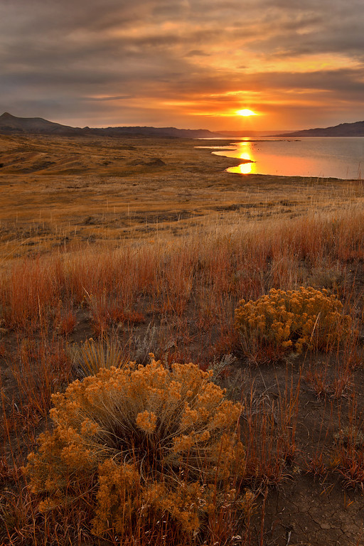 Sunrise, C.M. Russell National Wildlife Reserve and Missouri Breaks, Montana