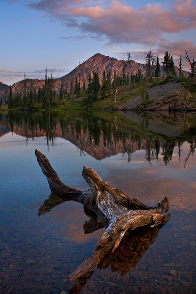 Driftwood at Sapphire Lake, Bob Marshall Wilderness, MT