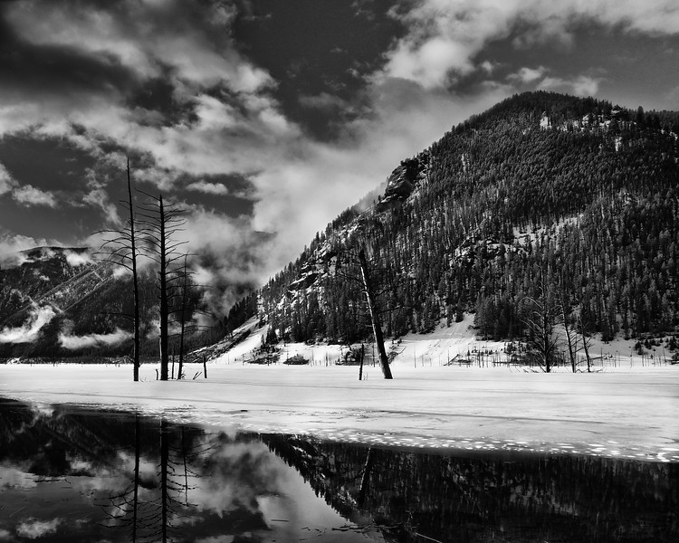 Quake Lake #3 (B&W), Gallatin National Forest, MT