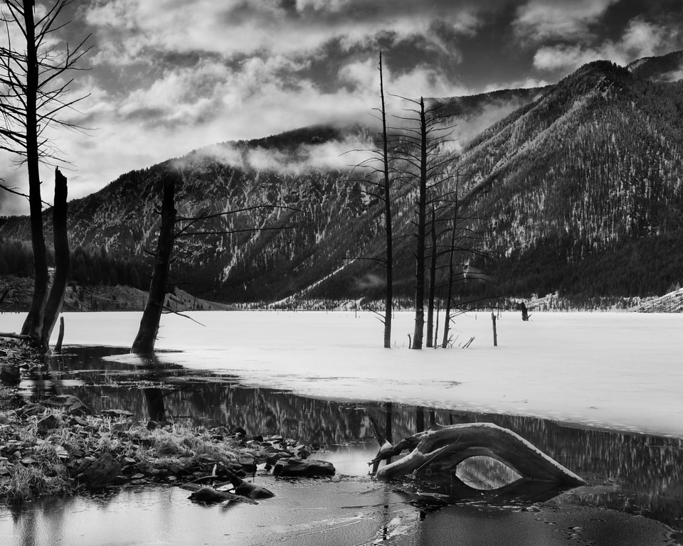 Quake Lake #6 (B&W), Gallatin National Forest, MT