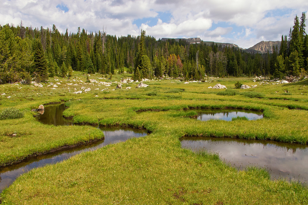 Streams and ponds above Lake Pipit, Lake Plateau Region, Absaroka-Beartooth Wilderness