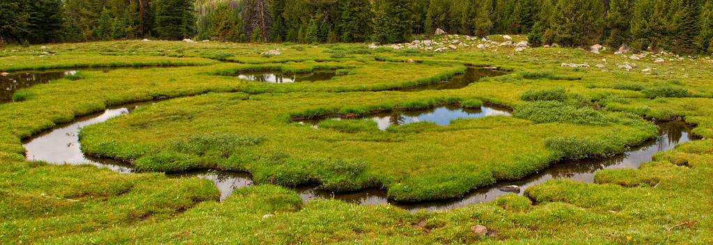 Meandering Stream below Lake Pinchot, Lake Plateau, Absaroka-Beartooth Wilderness, MT