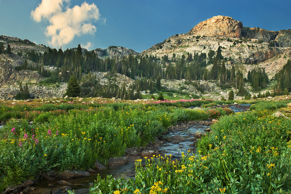 Martin Creek.  , Absaroka-Beartooth Wilderness