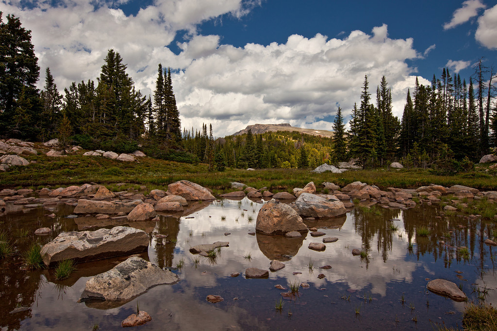 Reflection Pond above Owl Lake, Lake Plateau, Absaroka-Beartooth Wilderness, MT