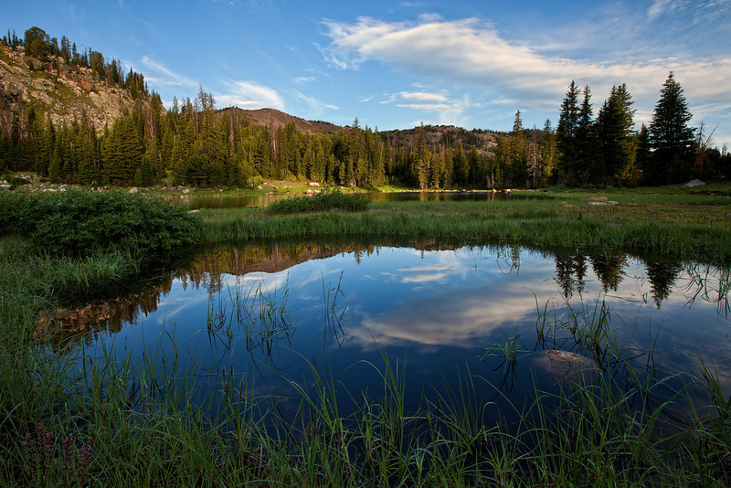 Reflection Pool, Lake Columbine, Absaroka-Beartooth Wilderness