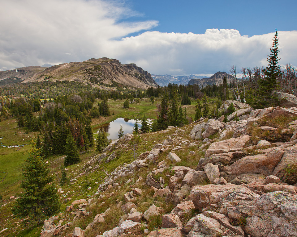 Lake Plateau, South of Owl Lake<br /> Absaroka-Beartooth Wilderness, MT