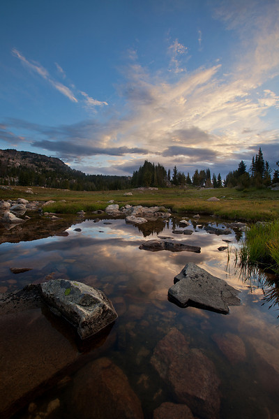 Pond Above Lake Pipit, Lake Plateau Region, Absaroka-Beartooth Wilderness