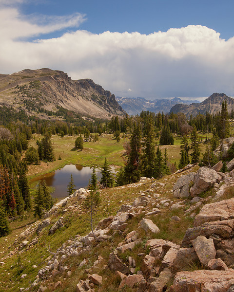 Lake Plateau II, South of Owl Lake<br /> Absaroka-Beartooth Wilderness, MT