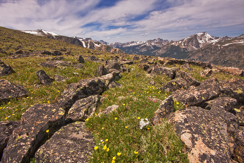 Froze-to-Death Plateau, Absaroka-Beartooth Wilderness, MT