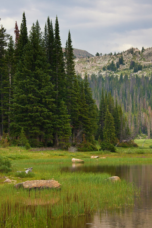 Calm Morning at Lake Columbine<br /> Absaroka-Beartooth Wilderness, MT