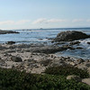 Point Pinos- Wednesday August 20, 2014