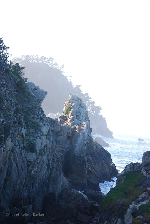 Monterey-Point Lobos