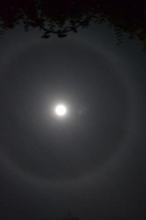 Moon 12/16/13