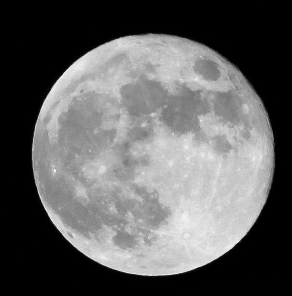 Strawberry Moon Day 177/365 Tonight's full moon. As always, hand held so it's not perfect. I used different settings this time. #365Project- Settings: 300.0mm 1/320s f/9.0 ISO:200