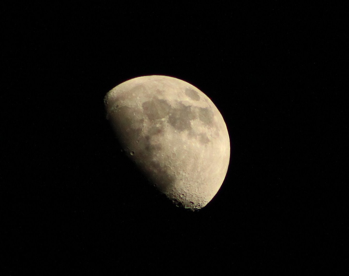 03.24.2010 day 83-Waxing Gibbous (9 day old, 68% full)