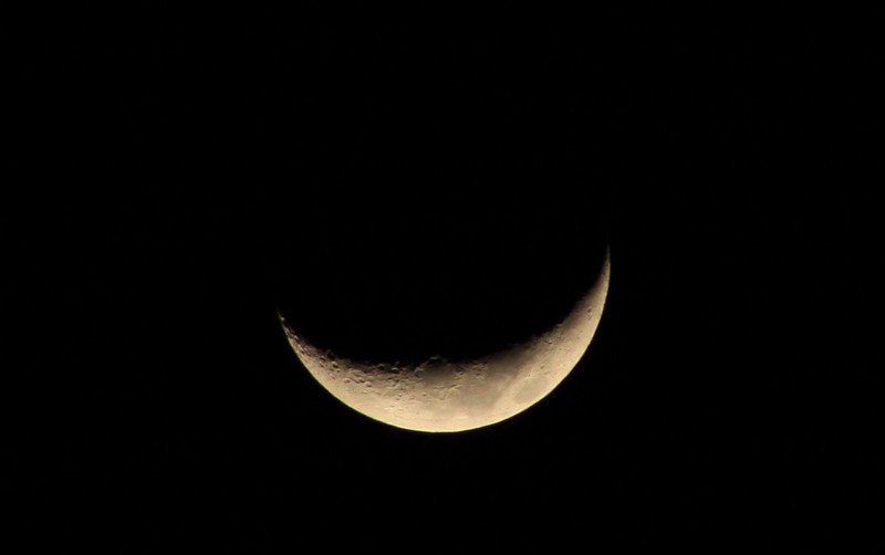 365 Project Day 49-Crescent Moon 5 days old, 18% visible.