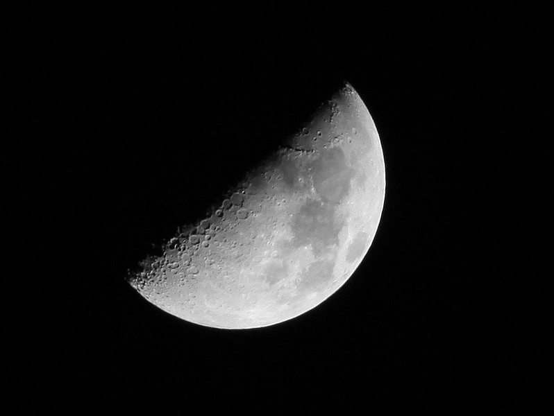 #365 Project Day 52- First Quarter Moon 8 days old.