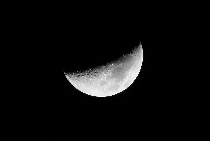 Day 51 #365 Project-7 day old moon 36% visible tonight.