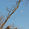 Waxing Gibbous Moon - 89% of full<br /> January 23, 2013