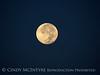 San Simeon Calif dawn moonset (8)