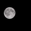 Full Moon <br /> May 22, 2016