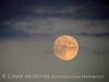 Moonrise 7-21-13 Acadia NP ME (4)