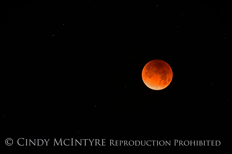 Lunar eclipse 1-31-18 Paso Robles CA (3)
