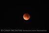 Lunar eclipse 1-31-18 Paso Robles CA (4)