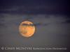 Moonrise 7-21-13 Acadia NP ME (7)
