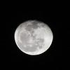 Waning Gibbous Moon - 91% of full<br /> December 31, 2012