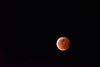 Blood Super Moon,  (1)
