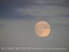 Moonrise 7-21-13 Acadia NP ME (3)