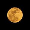 Full Moon at 100% of full<br /> January 12, 2017