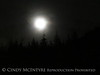 Moon and tree branch (3)