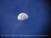 Waning three-quarter moon, Georgia (1)