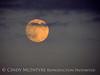 Moonrise 7-21-13 Acadia NP ME (6)