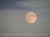 Moonrise 7-21-13 Acadia NP ME (1)