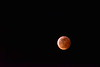 Blood Super Moon,  (2)