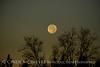 Moonset 12-18-13 (5)