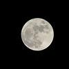 Full Moon<br /> November 25, 2015