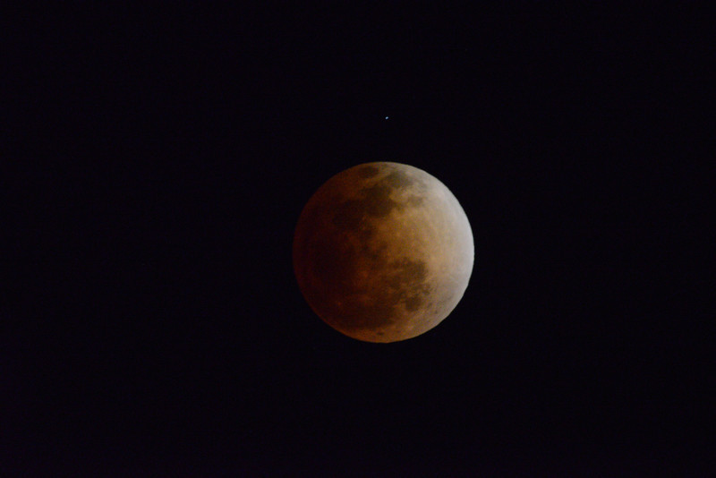Full Eclipsed Moon