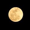Full Wolf Moon - 100% of full<br /> January 26, 2013