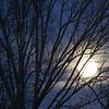 Full Moon - 100% of full<br /> January 26, 2013