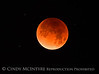 Lunar eclipse 1-31-18 Paso Robles CA (1)